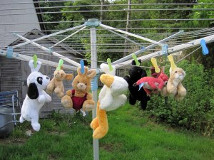 Cuddlies on the washing line